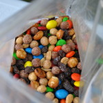 easy to make camping trail mix