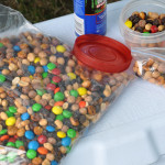 Easy Camping Trail Mix – Happy Trails!