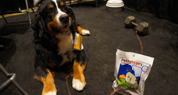 PeakWaggers Dehydrated Dog Meals
