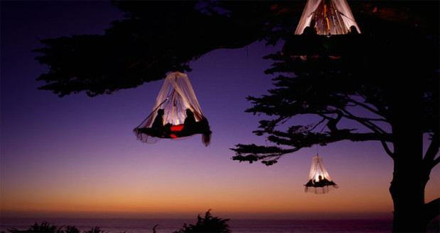 hanging_tree_tents123456789abc