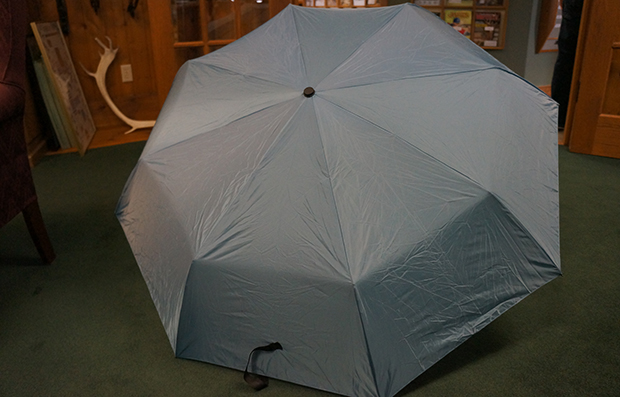 Innate Carmanah Travel Umbrella