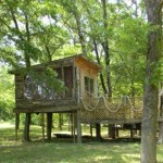 Camping Diamond Johns Riverside Retreat in Arkansas