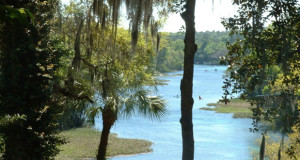 Camping Rainbow Springs State Park Florida
