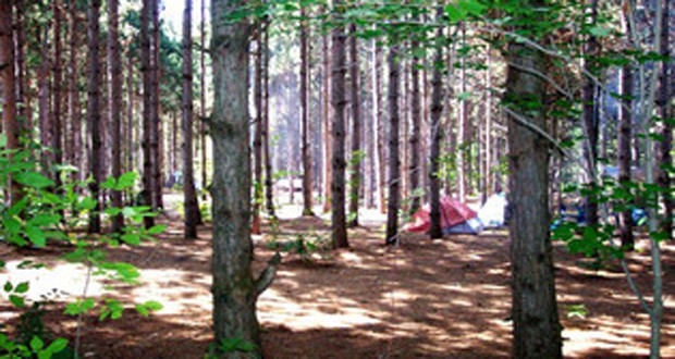 Camping Whitewater Township Park in North Michigan