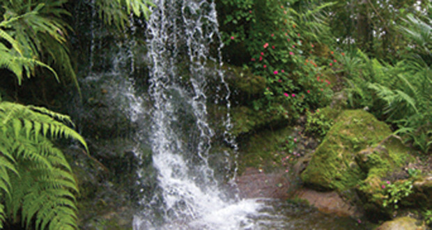 Rainbow Springs State Park Waterfall