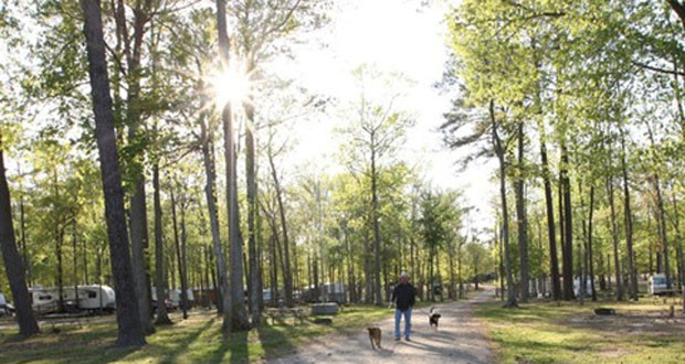 Virginia Beach KOA Camping