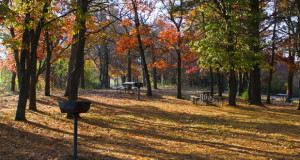 Camp ground in the fall