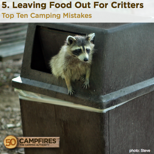 Leaving Food Out For Critters