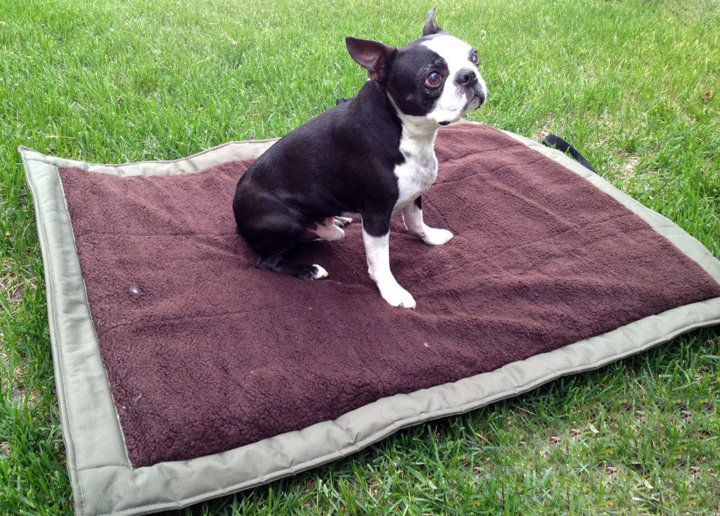 lightspeed outdoors traveling dog bed