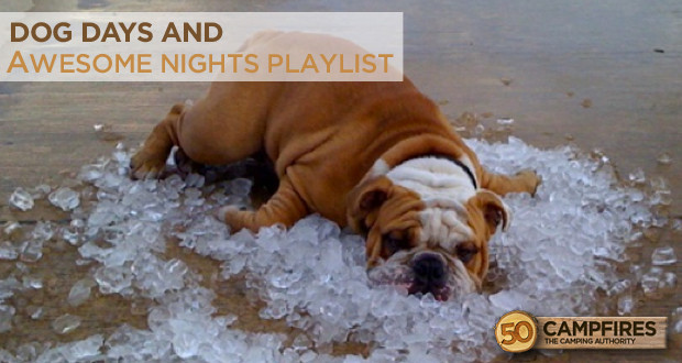 Dog Days and Awesome Nights Playlist
