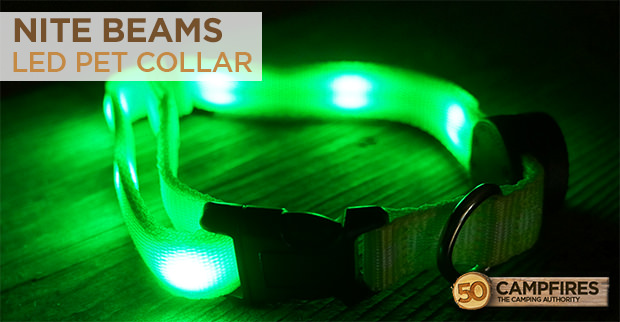 nite beams LED pet collar