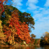 destinations to see fall color