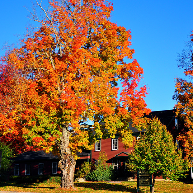 Top 10 Destinations To See Fall Color