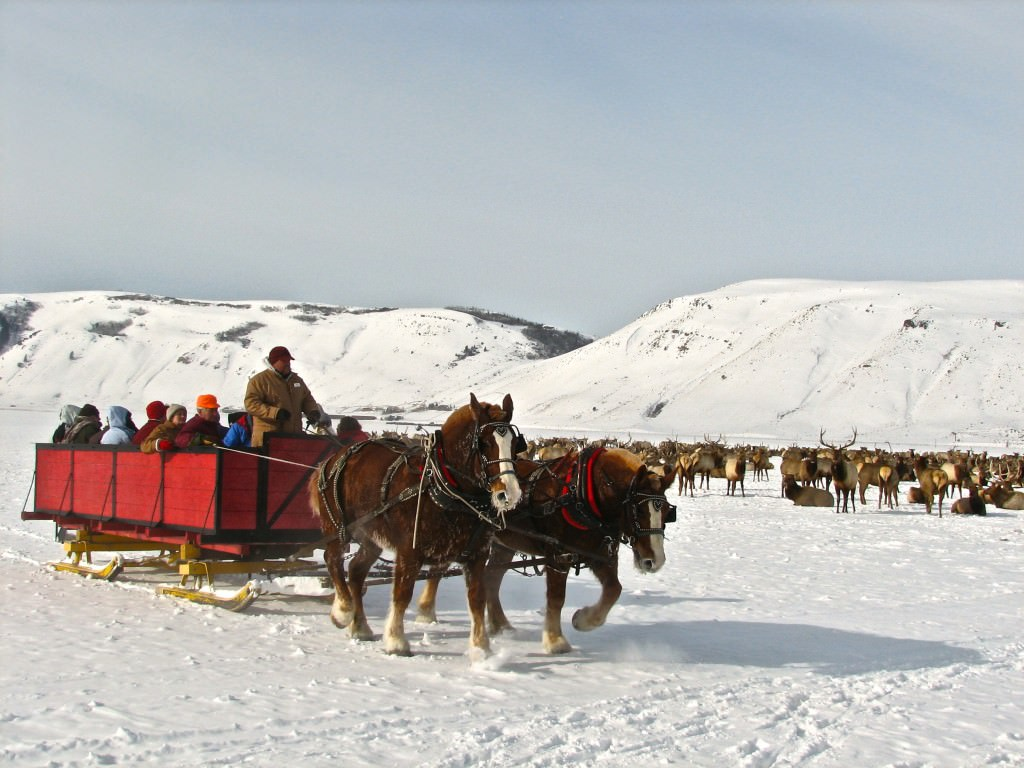 national wildlife refuge sleigh rides