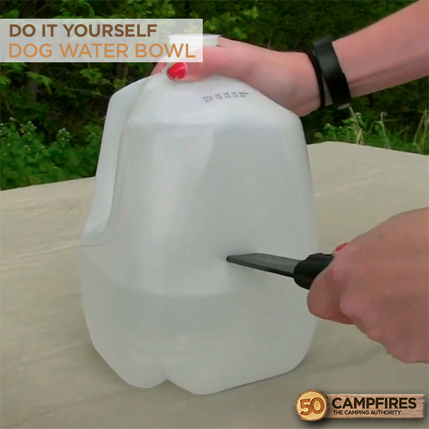 how to make a dog water bowl