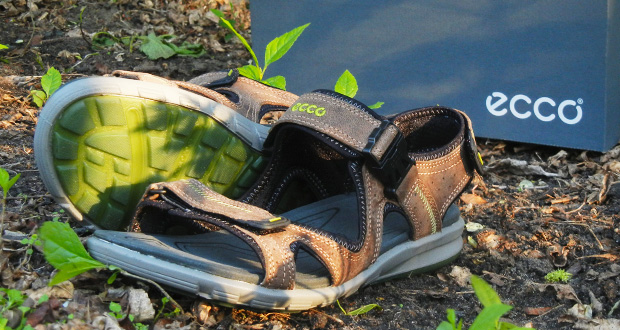 Ecco Cruise Sandal review