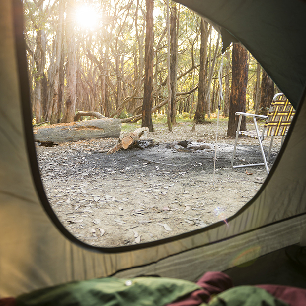 tips for dispersed camping