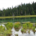 Clackamas_Lake_Campground_Portland_Camping 25 best campgrounds within 2 hours or portland oregon