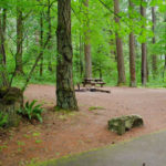 Eagle_Creek_Campground_Camping_Portland_Oregon 25 best campgrounds within 2 hours or portland oregon