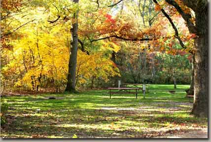 25 best campgrounds within two hours of madison wi 50 for Log cabin resort montello wi