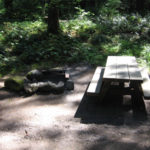 Tollgate_Campground_Camping_Portland 25 best campgrounds within 2 hours or portland oregon