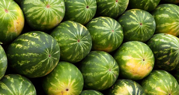 how to pick the perfect watermelon cover
