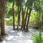 Seminole Campground