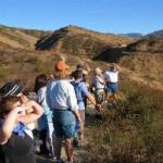 Yucaipa Park is one of the great campgrounds within 2 hours of Riverside / San Bernardino