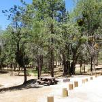 Crab Flats is one of the great campgrounds within 2 hours of Riverside / San Bernardino