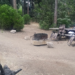 Dogwood Campground is one of the great campgrounds within 2 hours of Riverside / San Bernardino
