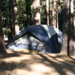 Idyllwild County Park is one of the great campgrounds within 2 hours of Riverside / San Bernardino, CA