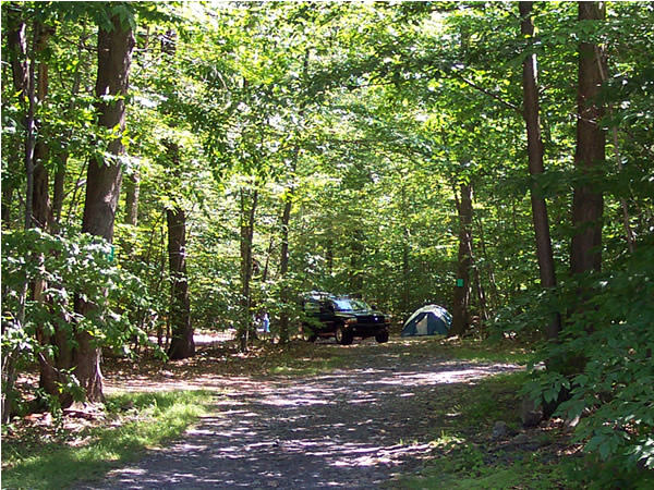 25 Best Campgrounds Within Two Hours Of Philadelphia Pa 50 Campfires