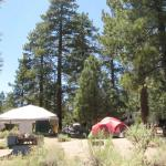Serrano Campground is one of the great campgrounds within 2 hours of Riverside / San Bernardino