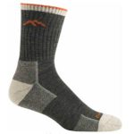 product shot of Darn Tough Men's Hiker Micro Crew Cushion Sock against white background