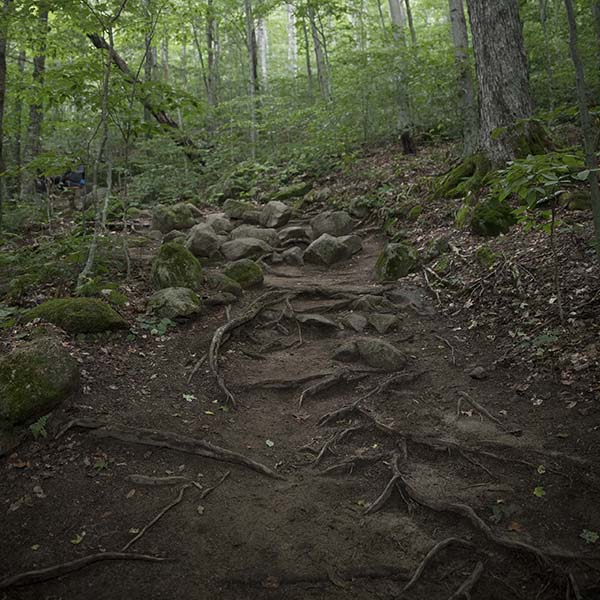 an easily accessible, welcoming stretch of the Appalachian Trail in New Hampshire
