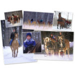 Outback Ranch Sleigh Rides In Minnesota