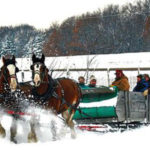 Roselawn Stables Sleigh Rides In Minnesota