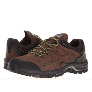 Jack Wolfskin Males's Altiplano Low Hiking Sneakers