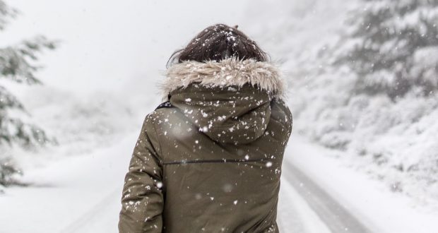what to look for in a winter parka