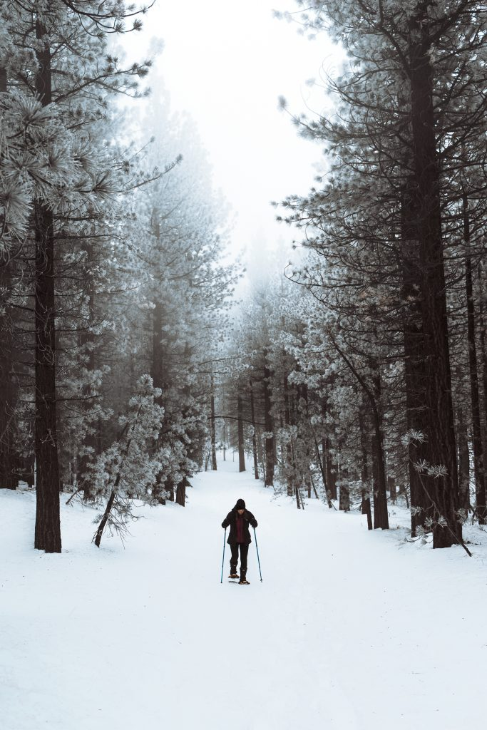 how to start snowshoeing